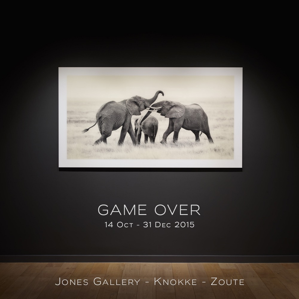 Jones Gallery - Game Over